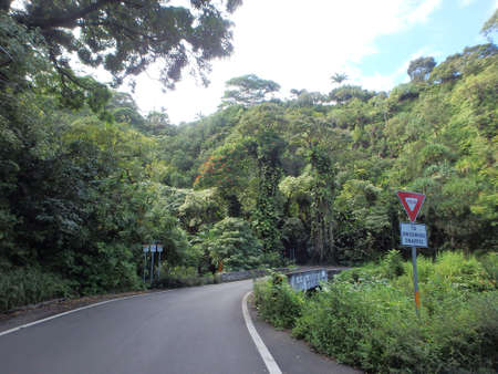 one lane: One lane bridge with Yield to Oncoming Traffic Sign on the road to Hana from the island of Maui Hawaii which features a diversity of nature, lush tropical green foliage, and beautiful skys.  The road is know for its challenging drive. Stock Photo