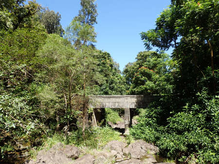 Bridge over small stream in forest in Maui on the Road to Hana. photo