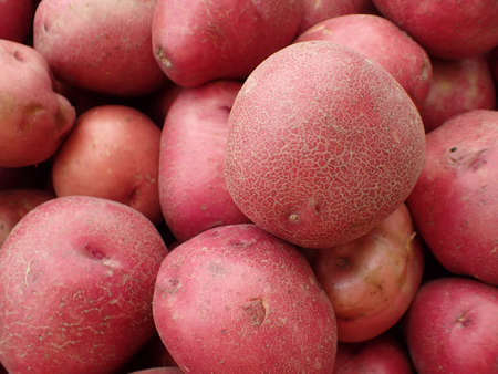 russet potato: Pile of Red Potatoes for sale at farmers market in Maui, Hawaii. Stock Photo