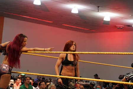 wrestlers: SAN JOSE - MARCH 28: Female wrestlers Becky Lynch and Sasha Banks in corner of ring during tag team matchat WWE Axxess event at the McEnery Convention Center in San Jose, California on March 28, 2015. Editorial