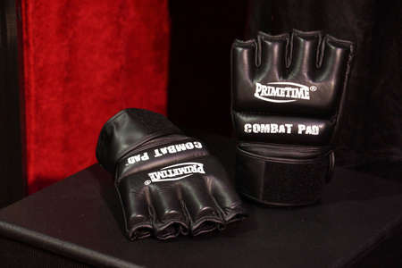 padding: SAN JOSE - MARCH 28: WWE Brock Lesnar Primetime Combat Pad Gloves from Wrestlemania 30 at WWE Axxess event at the McEnery Convention Center in San Jose, California on March 28, 2015.