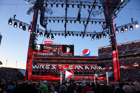 intensely: SANTA CLARA - MARCH 29: WWE Wrestler the Undertaker and Bray Wyatt fight in ring with crowd watching intensely during match at Wrestlemania 31 at the Levis Stadium in Santa Clara, California on March 29, 2015. Editorial