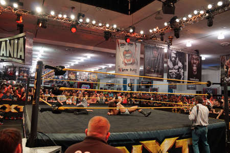 san jose: SAN JOSE - MARCH 28: NXT Wrestle Bull Dempsey pins opponent Jason Jordan in ring with ref counting during match at WWE Axxess event at the McEnery Convention Center in San Jose, California on March 28, 2015. Editorial