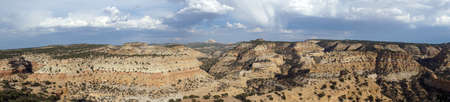 San Rafael Swell: Panoramic of San Rafael Swell Valley landscape with space trees in the distance in Utah.