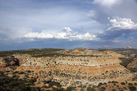 san rafael swell: San Rafael Swell mountain landscape with clouds and with space trees in the distance in Utah.