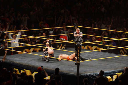 jose: SAN JOSE - MARCH 27: Ref points with both hands after NXT male wrestler Finn Balor beats Adrian Neville to finish match at the San Jose Event Center in San Jose, California on March 27, 2015. Editorial