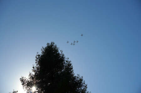 Blue Angels fly in the sky with sun shining through tree in San Francisco California.