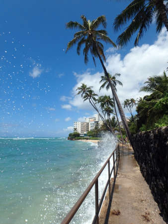 busting: Waves crash into sea wall busting into the air along path to Makalei Beach Park with Coconut trees hanging over the ocean and beach in distance on Oahu, Hawaii. Stock Photo