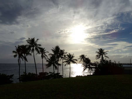 shorebreak: Sunset Kakaako park over the Ocean with coconut trees lining shoreline and clouds in sky on Oahu, Hawaii. Stock Photo