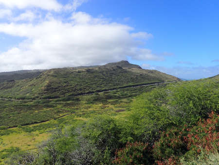 Lush Valley with road within Kaiwi State Scenic Shoreline on O'ahu's southeastern coastline 版權商用圖片