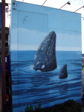 gray whale: SAN FRANCISCO - MARCH 21: Wyland Whale mural, Spyhopping Gray Whale, painted in 1994, is 52 Feet Long x 58 Feet High on the side of Pier 39 - Parking Structure Entrance on the San Francisco, CA on March 21, 2010.
