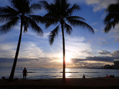 WAIKIKI, USA - MAY 15: Dramatic lighting of Sunsets through Coconut trees over Waianae mountains with light reflecting on ocean and illuminating the sky with boats sailing on the water off Waikiki Beach on Oahu, Hawaii. May 15, 2016.