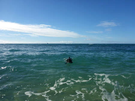 Black Dog Swims in ocean towards the shore on Oahu, Hawaii. Stock Photo