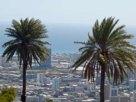 Two Palm trees with Honolulu, Diamond Head, Waikiki, Buildings, parks, hotels and Condos with Pacific Ocean stretching into the distance on nice day. Stock fotó