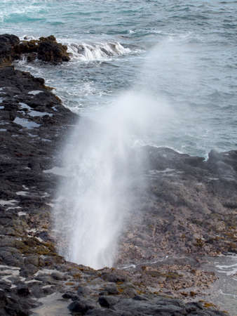 Spouting Horn shoots water into the air.  Spouting Horn is located in the Koloa district on the southern coast of Kauai. This area of Kauai is known for its crashing waves (nearby Poipu translates to crashing). These waves erode lava rocks on the coastline which can create narrow openings, as is the case with Spouting Horn. Imagens