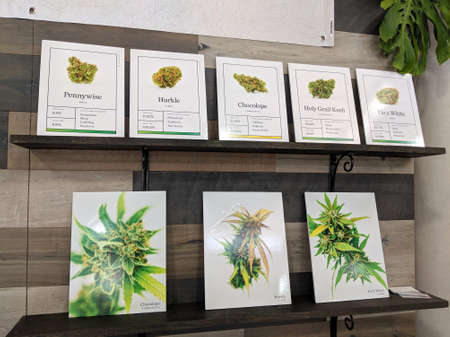 Honolulu - February 10, 2018:  Strains of Cannabis Flower on display at the 3rd Annual Hawaii Cannabis Expo inside the Neal S Blaisdell Exhibition Hall, Honolulu, Hawaii.