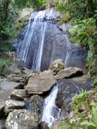 La Coca Waterfall, Rainforest waterfall in El Yunque National Forest, Puerto Rico.