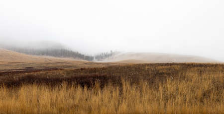 Dreary, foggy, empty, and barren winter landscape at the National Bison Range wildlife refuge, Montana, USA
