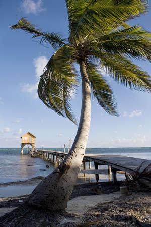 Palm, Pier and Hut at Sunset Stok Fotoğraf