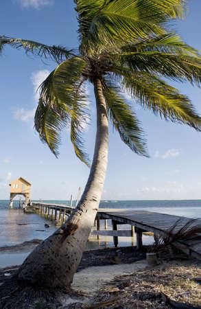 Palm Tree, Pier and Hut @ Sunset