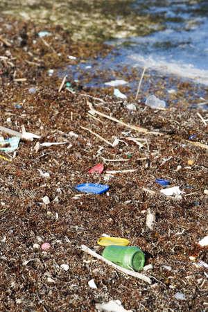 Pollution Blown onto the Beach