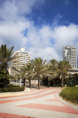Walkway, Palms & Resorts