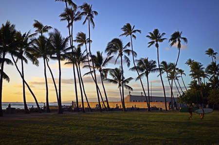 Palm Trees at Waikiki Sunset