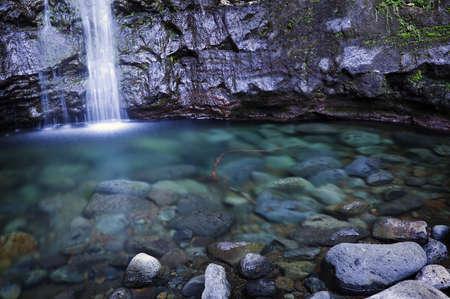 Manoa Falls, Oahu photo