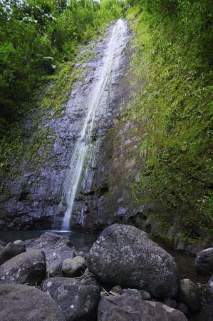 Manoa Falls, Oahu photo