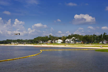 Yellow Boom & Quiet Bay, Gulf Coast photo