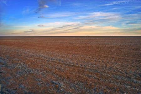 Empty Farmland Horizon