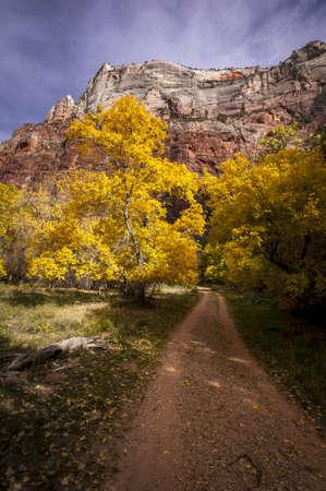 Gravel Road thru Canyon Country Stock Photo