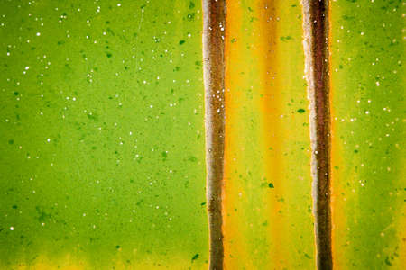 Green Metal Building Stock Photo