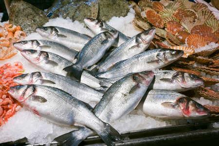 city fish market: Trouts for sale at the Rialto fish market - Venice, Venezia, Italy, Europe