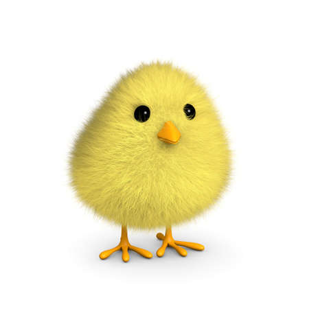 A fluffy yellow chick isolated on a white background  3D render
