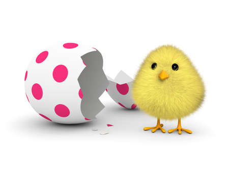 easter chick: A fluffy yellow chick coming out of an easter egg shell  3D render