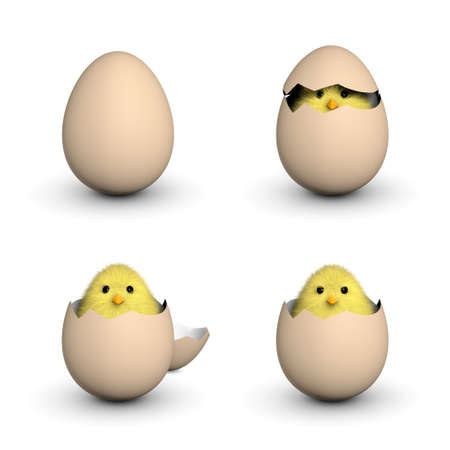 A fluffy yellow chick peeking out of an egg shell  3D render  photo