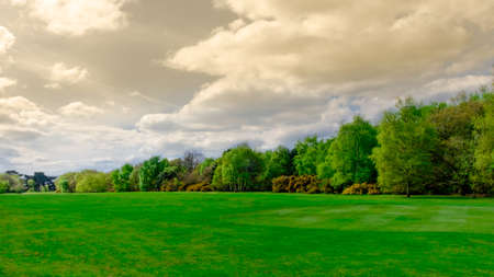 Meadow in Wimbledon Common under a overcast sky, London England Stock Photo