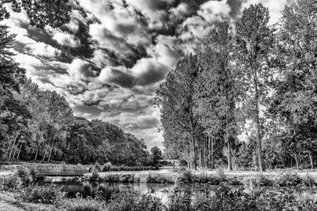 St-Fraimbault pond surrounded by a luxuriant vegetation on a overcast day in summer Orne, Normandy France