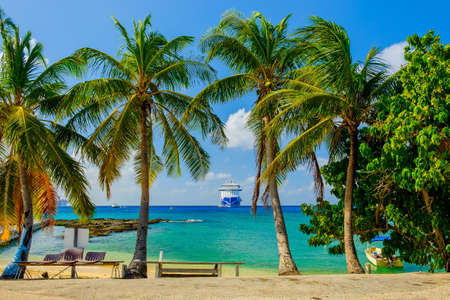 Grand Cayman, Cayman Islands, Dec 2018, cruise ship moored by George Town 報道画像