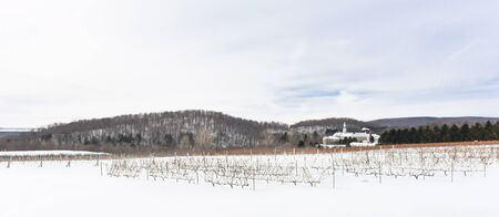 winter: Wineyards during winter in Oka, Quebec, Canada Stock Photo