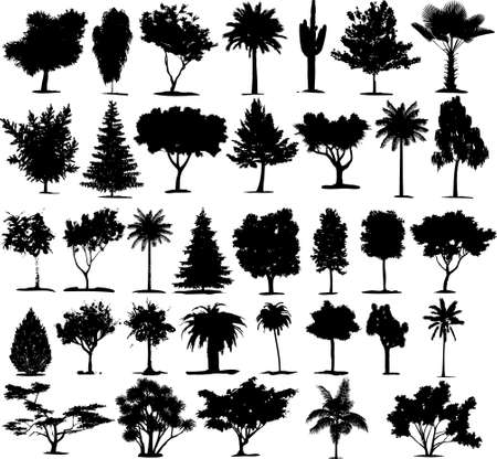 Beautiful Transparent Trees Vectors. Thirty five Plants Vector