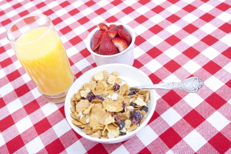 Nutrtious breakfast of cereal, fuit and orange juice photo