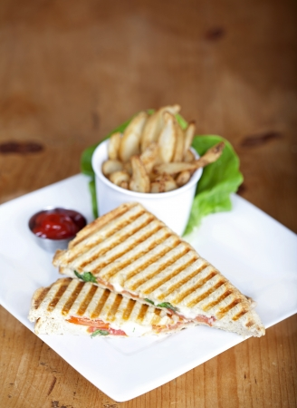 panini: Grilled caprese sandwich with fried potatoes and ketchup on a plate
