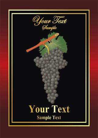 vector wine label with grape Vector