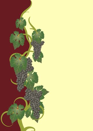wine and food: wine label