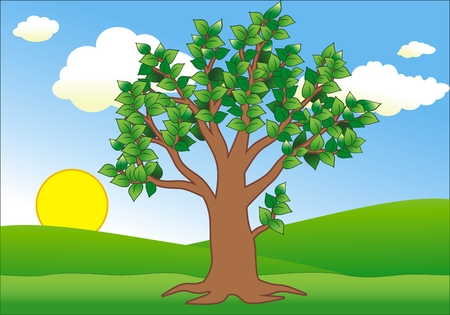 vector landscape with a big tree Stock Vector - 4616203