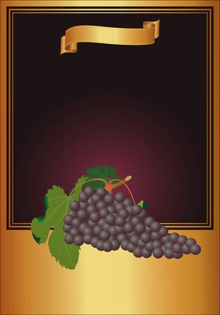vector gold wine label with grape Vector