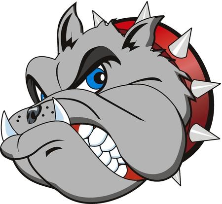 dientes caricatura: cabeza vector Bulldog muy enojado
