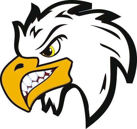 halcones: Ilustraci�n de �guila de cabeza enojado Vectores